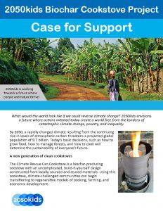 Biochar Case for Support